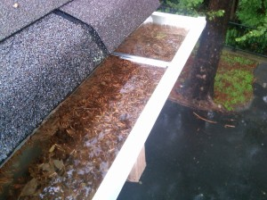 Clogged Gutter